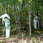 Installation en forêt